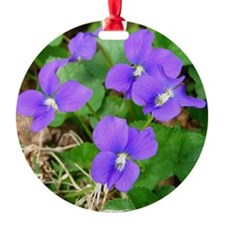 Are Violets Blue? Ornament
