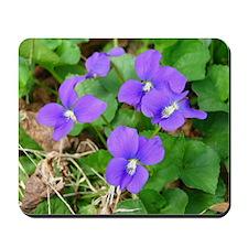 Are Violets Blue? Mousepad