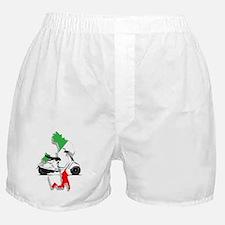italy flag vespa Boxer Shorts
