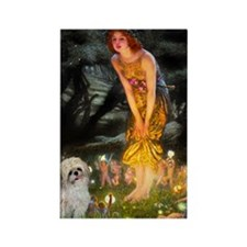 Midsummer's Eve Shih Tzu Rectangle Magnet