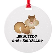BIRDSEED? WHAT BIRDSEED/ Ornament