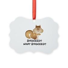 BIRDSEED? WHAT BIRDSEED/ Ornament