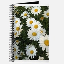 Field of Daisies Journal