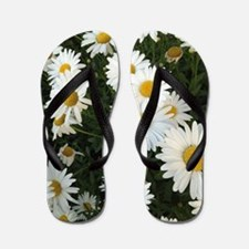 Field of Daisies Flip Flops