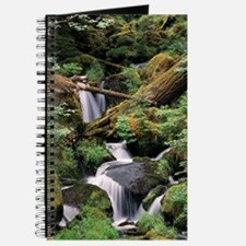 Watson Creek Journal