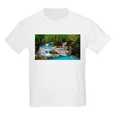 Forest Waterfalls T-Shirt