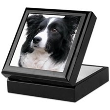 Border Collie Head Study Female 2 Keepsake Box