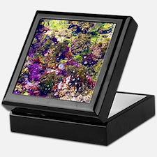 Sea Jewels: Low Tide  Keepsake Box