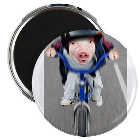 Pig Biker Magnet