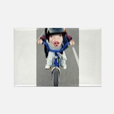 Pig Biker Rectangle Magnet