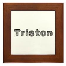 Triston Wolf Framed Tile