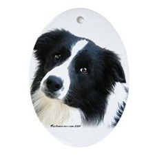 Border Collie Portrait Water Colour Ornament (Oval