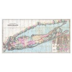 Vintage Map of Long Island (1880) Canvas Art