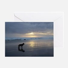 Lone Shepherd Greeting Card