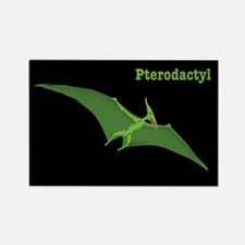 Pterodactyl Dinosaur Rectangle Magnet