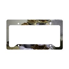 Catered Foods License Plate Holder