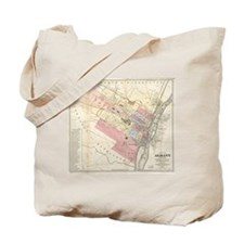 Vintage Map of Albany NY (1874) Tote Bag