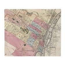 Vintage Map of Albany NY (1874) Throw Blanket