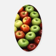 Various Types of Apples Oval Car Magnet