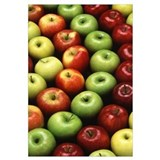 Apples Wrapped Canvas Art