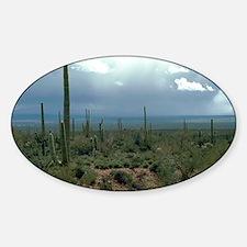 Arizona Desert and Cactuses Decal