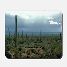 Arizona Desert and Cactuses Mousepad
