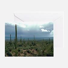 Arizona Desert and Cactuses Greeting Card