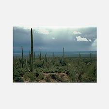 Arizona Desert and Cactuses Rectangle Magnet