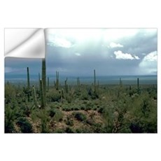 Arizona Desert and Cactuses Wall Decal