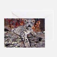 Paws Off Greeting Card