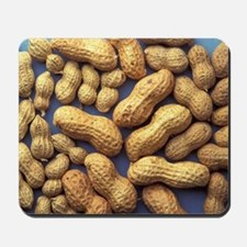 Peanuts Mousepad
