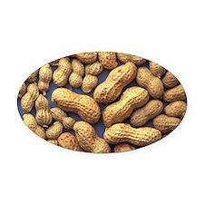 Peanuts Oval Car Magnet