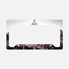 United States Presidential In License Plate Holder