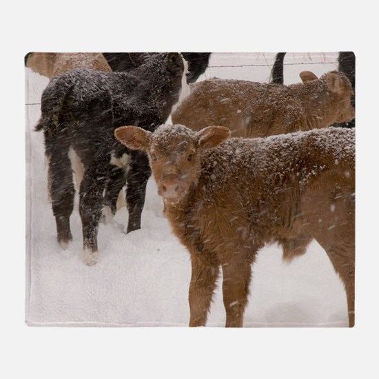 Calves in The Snow Throw Blanket