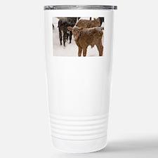 Calves in The Snow Stainless Steel Travel Mug