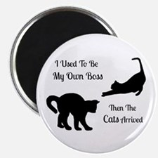 Funny Cat Boss Round Magnet Magnets