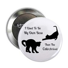 """Funny Cat Boss Pin 2.25"""" Button"""