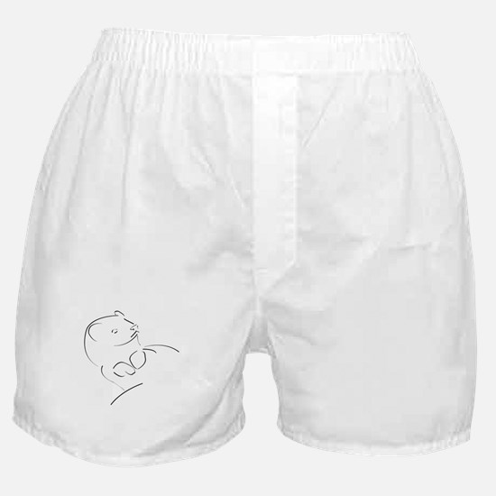 ferret01 Boxer Shorts