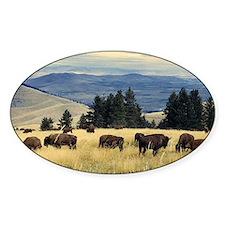National Parks Bison Herd Decal
