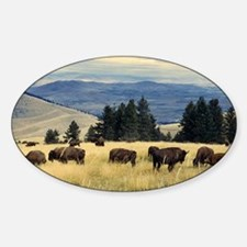 National Parks Bison Herd Sticker (Oval)