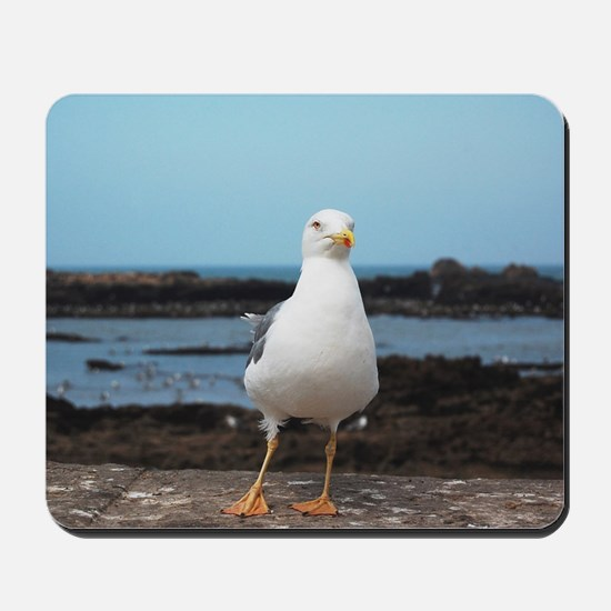Seagull hesitates Mousepad