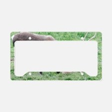 Caribou with Large Antlers License Plate Holder