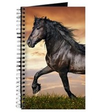 Beautiful Black Horse Journal