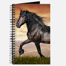 Beautiful Black Horse Journal