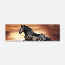 Beautiful Black Horse Car Magnet 10 x 3