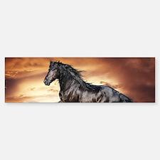 Beautiful Black Horse Bumper Bumper Bumper Sticker