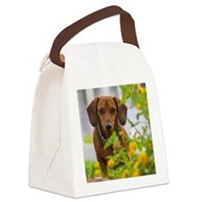 Mini Red Dachshund Canvas Lunch Bag