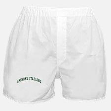 Spinone Italiano (green) Boxer Shorts