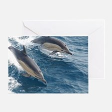 Common Dolphin Greeting Card