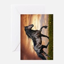 Beautiful Black Horse Greeting Card